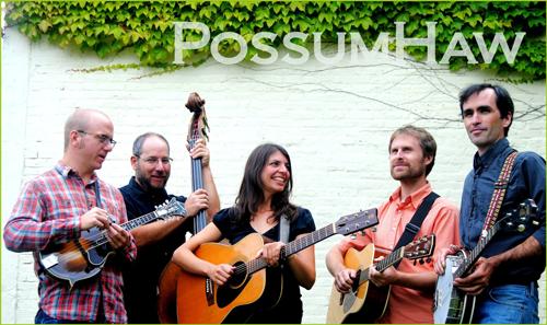 possum_web