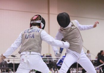 fencing Archives - Island Arts